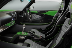 ELISE-250-Option-Vivid-Green-INT